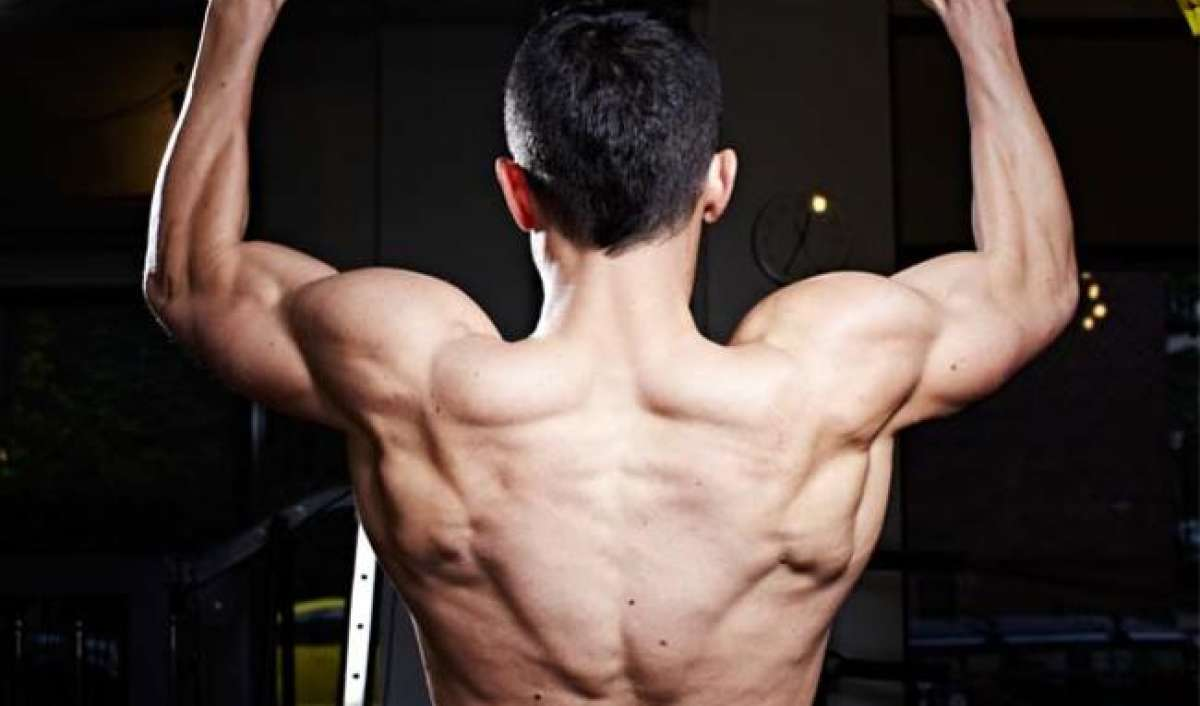 Build muscle lose weight
