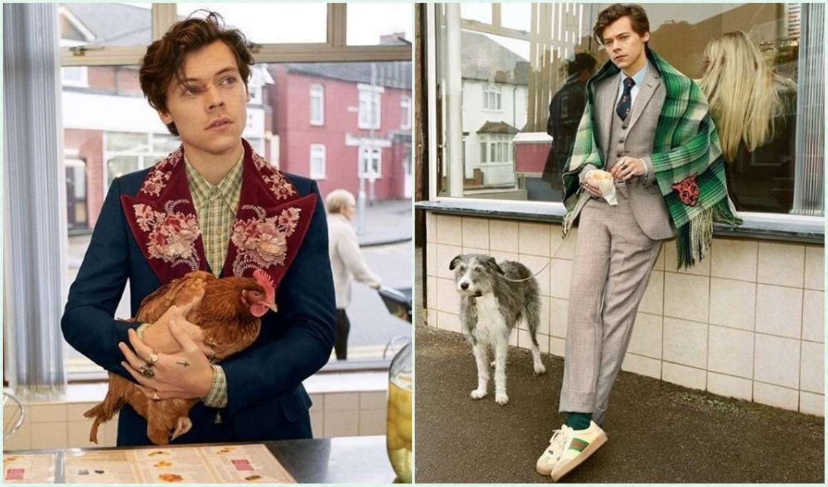 featured image Harry styles Gucci campaign