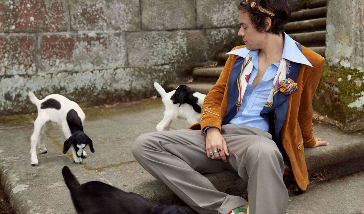 harry styles, Gucci cruise ss19 campaign