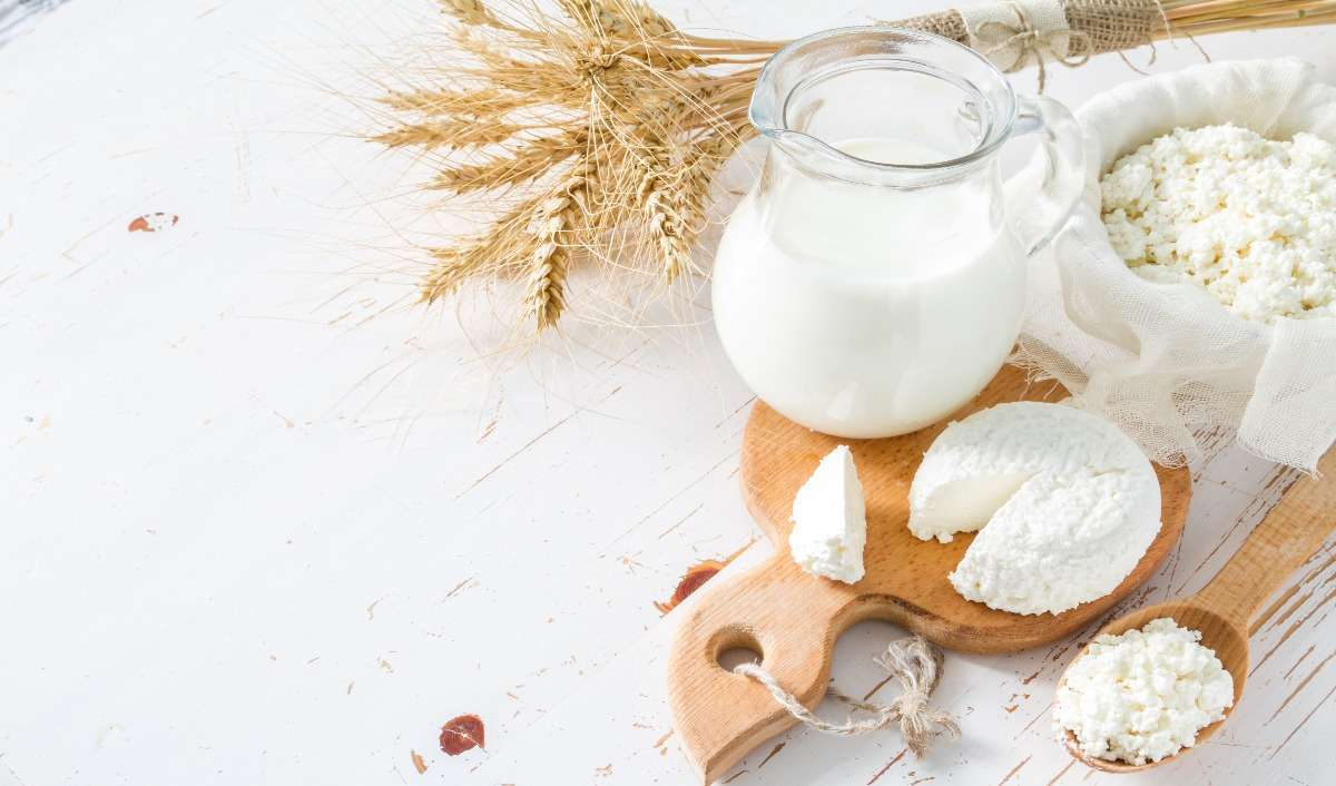lactose intolerance featured image