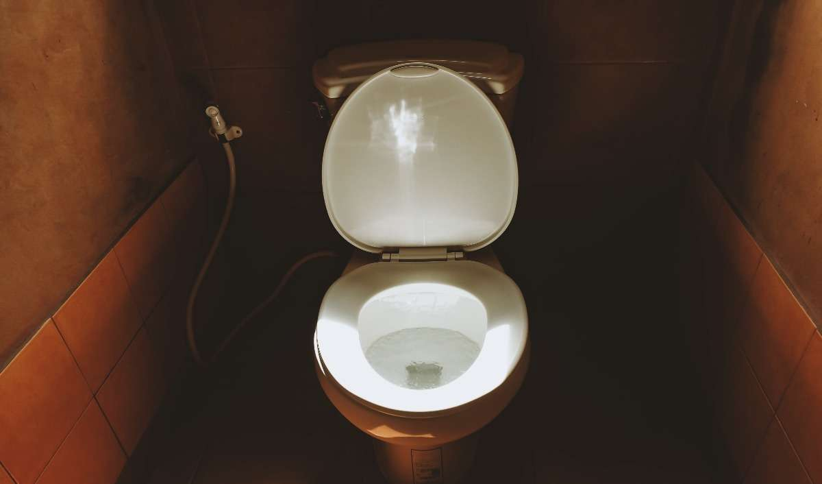What your poop says about you
