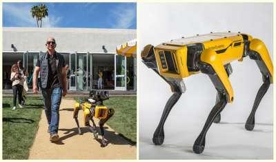 SpotMini dog robot